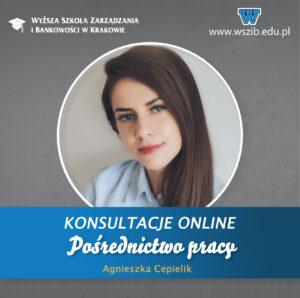 Pośrednictwo pracy/Studencka Sieć Promocyjna – konsultacje